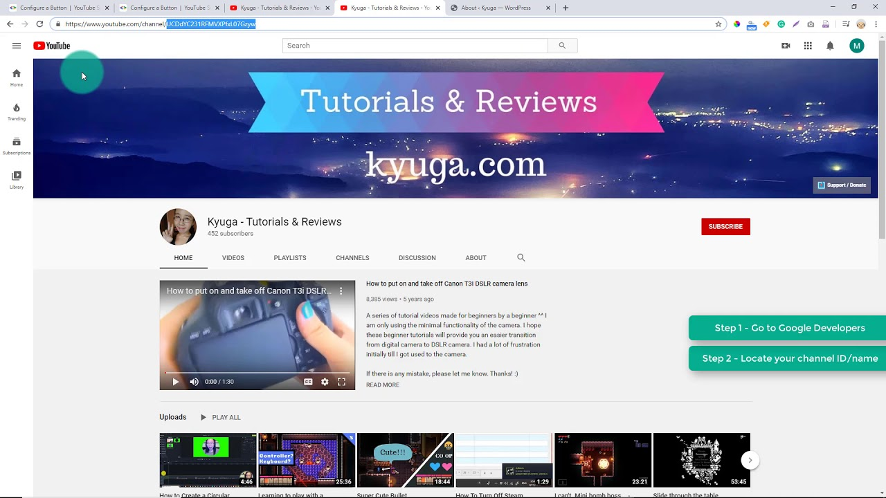 HOW TO display a YouTube Subscribe Button with Subscriber Count on a WordPress Post/Page/Widget